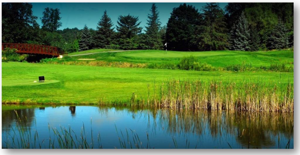 cc golf 2