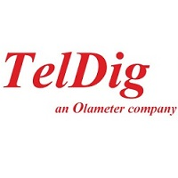 sponsors-teldigolameterlogo_red_big_nobg_en