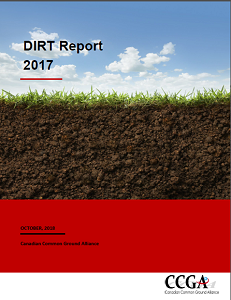 dirtreport2017